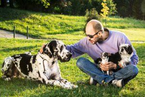 Man posing with his dogs (Great Dane, Shih Tzu, Chihuahua)